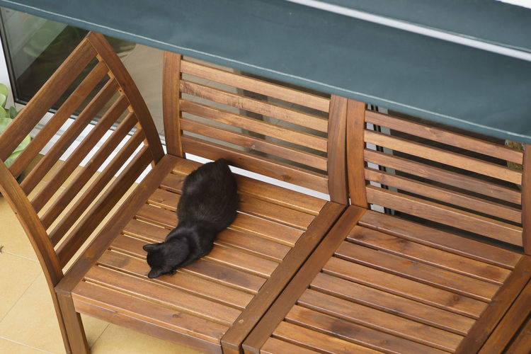 High angle view of black cat on chair