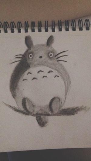 Totoro by Laura !!! Draw Totoro Followme
