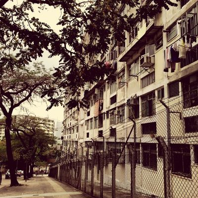 Housing Estate Tree Building Exterior Architecture Built Structure Outdoors Day No People City Sky