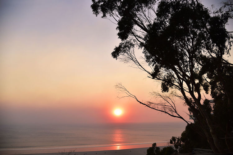 Smoke on the Water Red Sunset Beach Beauty In Nature Branch Day Horizon Over Water Idyllic Nature No People Ocean Orange Color Outdoors Reflection Scenics Sea Silhouette Sky Smokey Sky Sun Sunset Tranquil Scene Tranquility Tree Water Wildfire