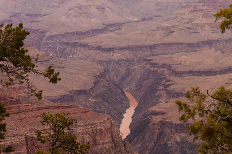 Beautiful view of the Grand Canyon from the south rim EyeEmNewHere Colorado River In Grand Canyon Grand Canyon Arid Climate Beauty In Nature Climate Colorado River Day Environment Eroded Formation High Angle View Land Landscape Mountain Mountain Range Nature No People Non-urban Scene Outdoors Plant Rock Tranquil Scene Tree Wallpaper Water Nature