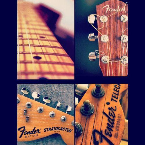 Fender mania Fender Fenderstratocaster Fendertelecaster
