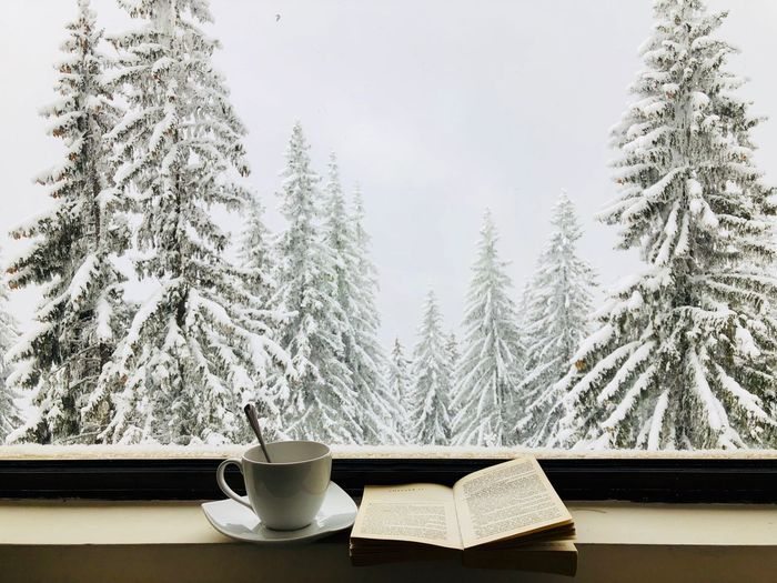 Open book with cup and saucer on window sill against snow covered trees