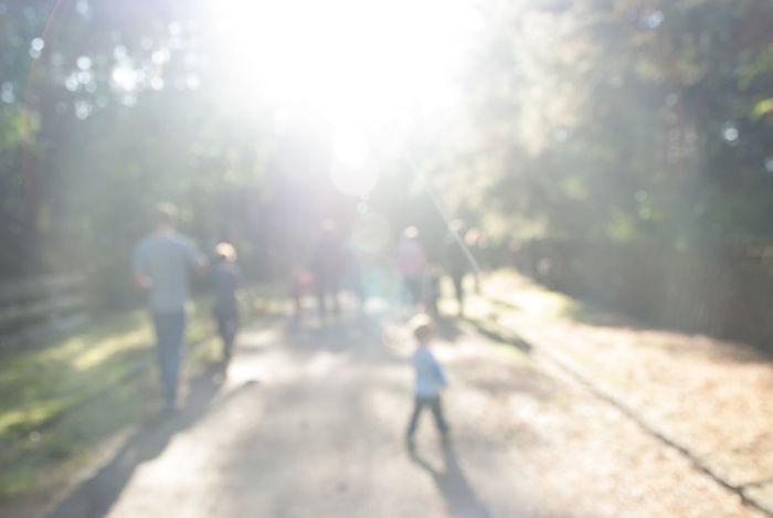 Adult Day Kid Kids Nature Outdoors Overcast Overexposed People Real People Shadow Sunlight Tree Walking überbelichtet