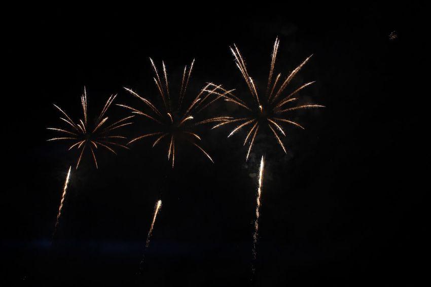 Night Firework Exploding Firework Display