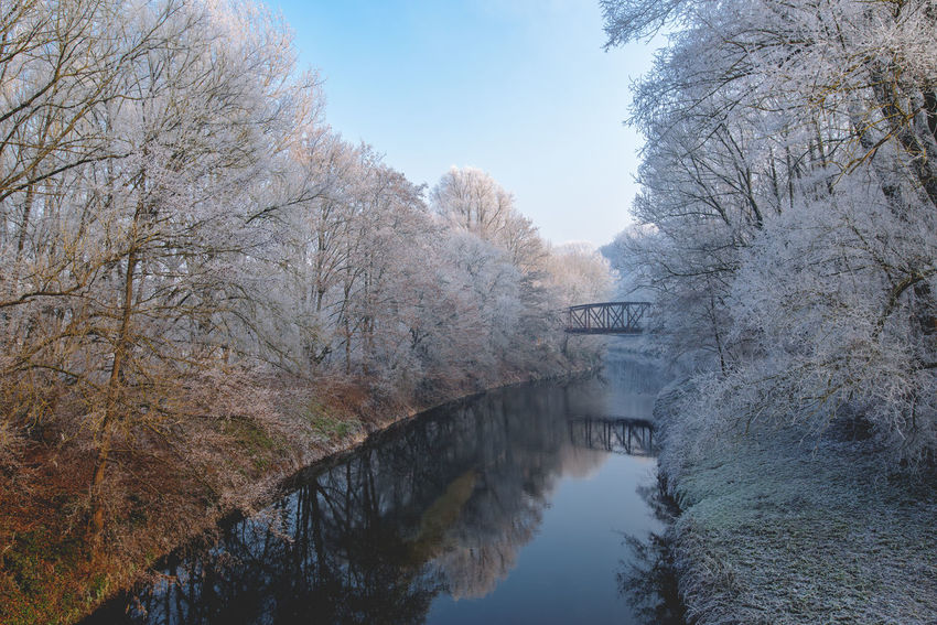 Architecture Beauty In Nature Beauty In Nature Bridge - Man Made Structure Built Structure Cold Temperature Day Extreme Weather Frost Frosty Frosty Morning Frosty Mornings Frozen Frozen Nature Nature Outdoors Reflection Tranquility Tree Vacations Water Wimter's Morning Winter Winter Wonderland Wintertime