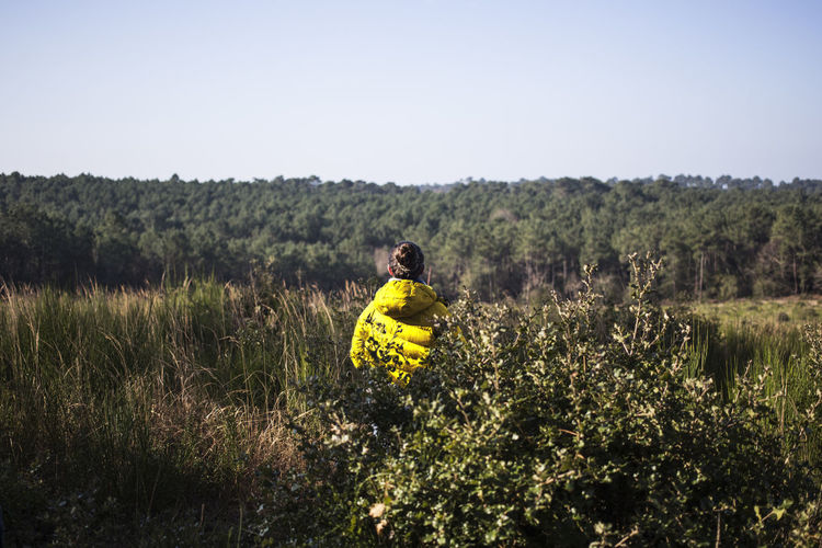 Rear view of person standing on yellow flower field
