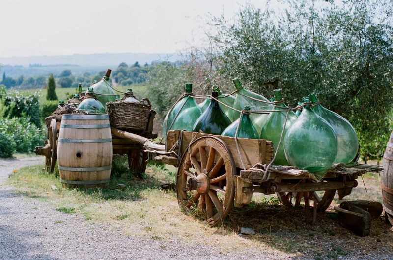 Tuscany Italy Tuscany EyeEm Filmphotography Transportation Field Nature Mode Of Transportation Day Tree Plant No People Outdoors Agricultural Equipment