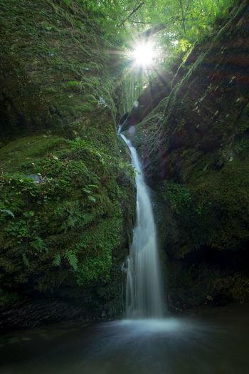 Ehrbachklamm Beauty In Nature Ehrbachklamm Flowing Flowing Water Forest Hunsrück Idyllic Motion Nature Non-urban Scene Outdoors Rock - Object Scenics Stream Sunbeam Sunlight Tranquil Scene Tranquility Water Waterfall