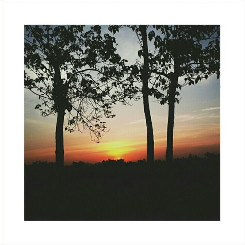 The sunset 🌅