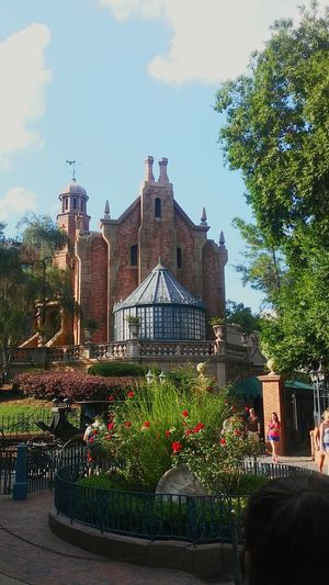 Disney World✨ Amusement Parks Tourist Attraction  Architectural Detail Architecture Structure Overpriced Dreamland Tourist Destination Crowds Fun Childrens Favorite Destination Memories ❤ Fantasy Anything For Our Children Beautifully Landscaped Grounds