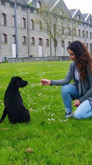 Me :)  & Mydog Telling Stories Differently Shakira Negra Flowers Iloveher Labrador Love Nice Day