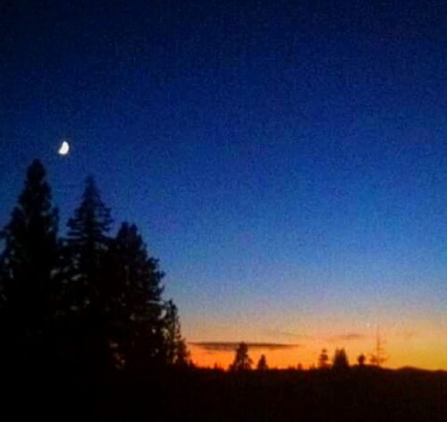 Moon Night Astronomy Full Moon Scenics Sky Star - Space Clear Sky Moonlight Excitment Oregon Proud! Path Of Totality Corona Blackout! Totality Worldwide Event Looking Up! Eclipse Eclipse 2017 Special Moment Total Eclipse Solar Event Getty Images Willamette Valley Sky Watch Waiting ...