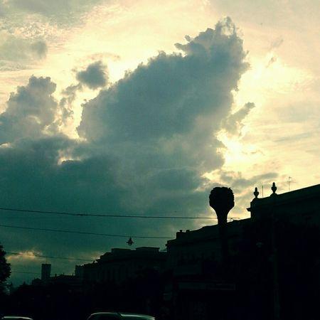 Sky Love💙