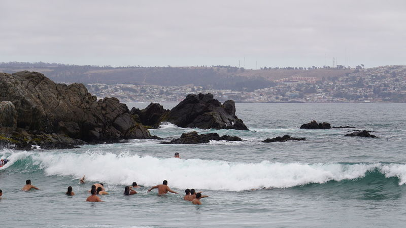 The day is cloudy and the water is cold, but there are always brave people willing to bathe Sea Beach Water Animal Outdoors Large Group Of People Wave People Beauty Colony Day Sky Adult Nature