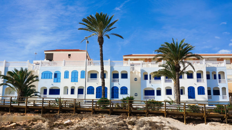Palm trees and houses against blue sky