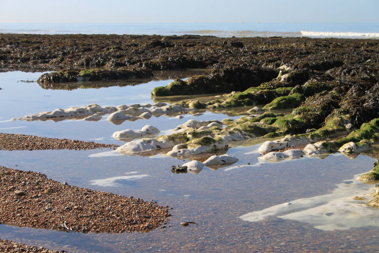 Sea, Tides Out, Rocks, Seaweed, Shoreline,
