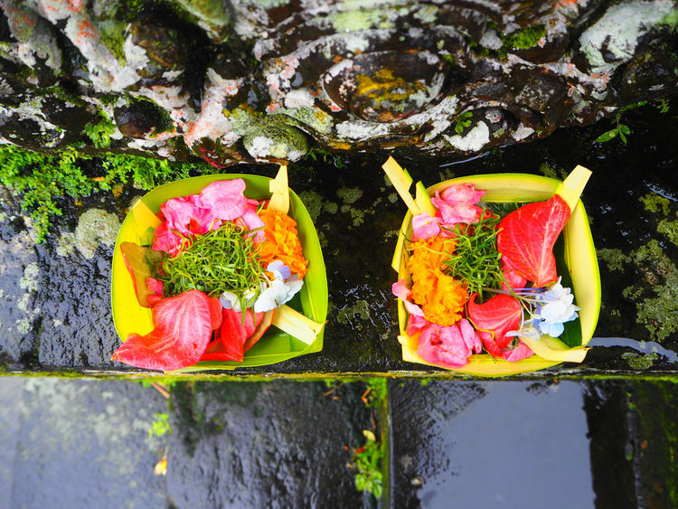 🌸🌺🌷🙏 Travel Ubud Bali Bali, Indonesia Beauty In Nature Close-up Adapted To The City Exceptional Photographs Flower Flower Head Flowerporn Fragility Freshness Green Color High Angle View Leaf Multi Colored No People Outdoors Tadaa Community Travel Destinations Ubud, Bali Petal Nature The City Light