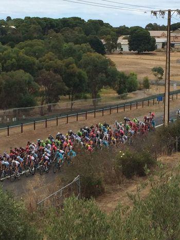 Australia Bikes Tourdownunder Mclaren Vale IPhone Nofilter South Australia