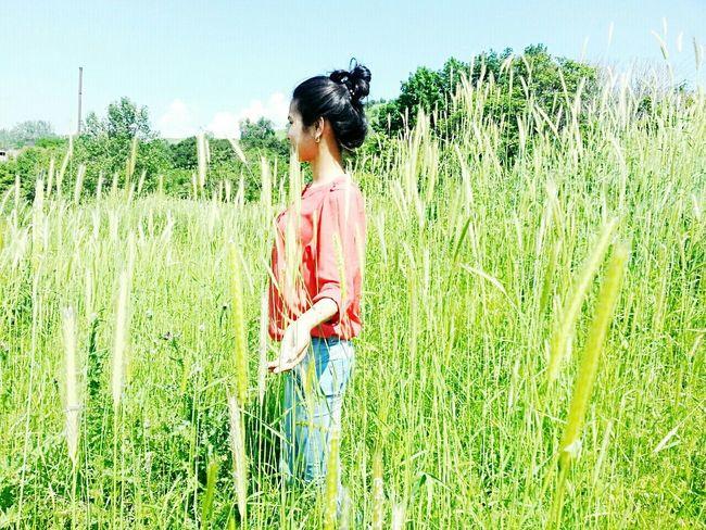 Nature Summer ☀ Happiness ♡ память друзья Friends ❤ лучшиемоменты красота Природа дружба