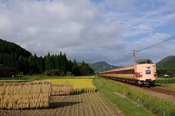 秋 Rice Field Japan Train Railway Autumn Nikon D700 田舎 Eyem Best Shots