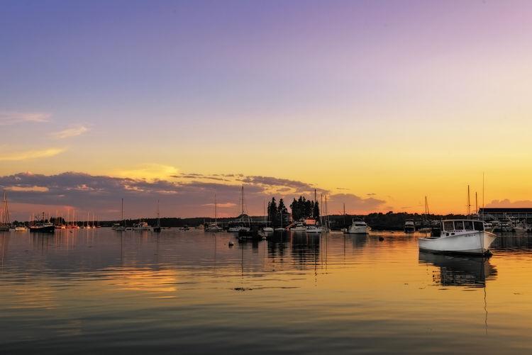 Harbor New
