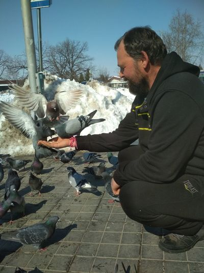 Dove Doves Doves, Birds Dove Love Dove In The City Dove - Bird Dove Of Peace Bulgaria Dimitrovgrad One Person Mature Adult One Man Only Only Men Men Day People Outdoors Adult Real People Sky Manual Worker Adults Only