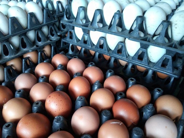 EyeEm Selects Large Group Of Objects Full Frame Indoors  Backgrounds Food Food And Drink Day Egg Carton Chicken Eggs