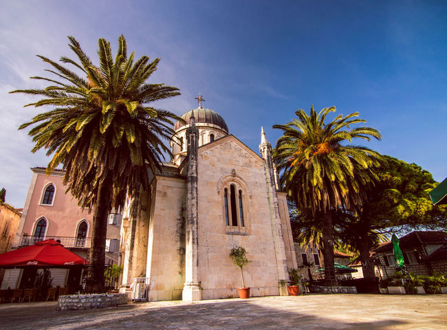 Herceg Novi Church Colour Your Horizn Palm Tree Tree Architecture Travel Destinations No People Building Exterior Built Structure Day Outdoors Sky