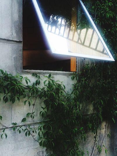 Magic Window Architecture