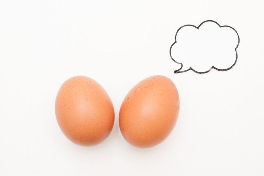 Speaking food: couple of eggs talking with comic label Animal Egg Brown Close-up Comic Copy Space Egg Food Landscape No People Red Still Life Studio Shot White Background