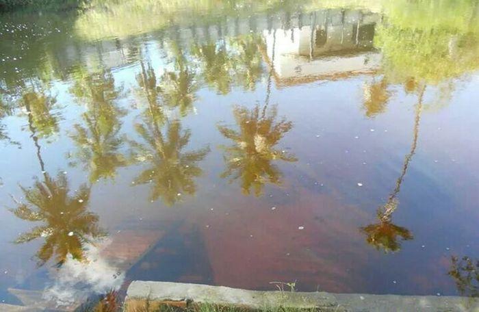 Imbassai Water Reflections Waterscape