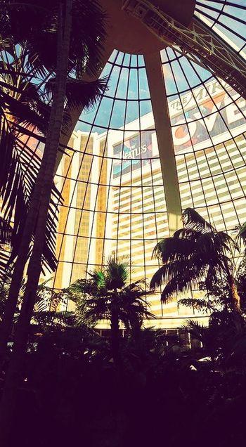 Las Vegas Mirage Hotel Day