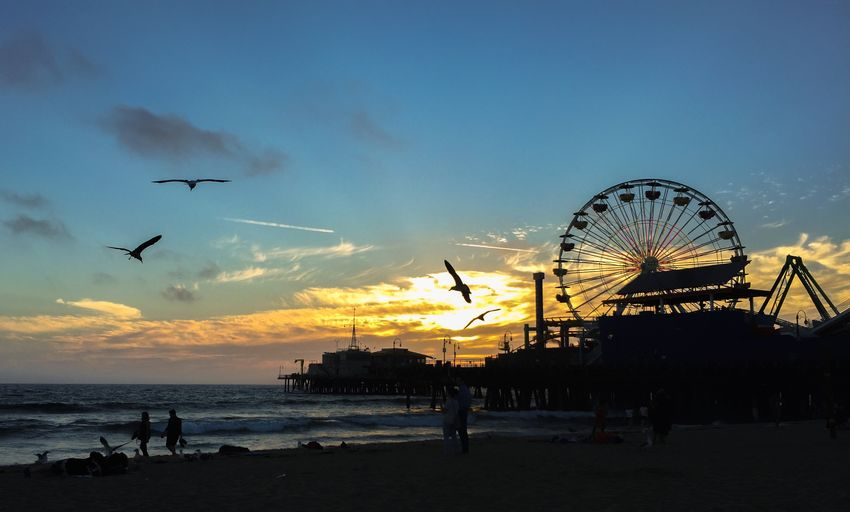 Sky Amusement Park Amusement Park Ride Water Sunset Land Beach Arts Culture And Entertainment Silhouette Ferris Wheel Leisure Activity Sea Group Of People Nature Cloud - Sky Incidental People Flying Beauty In Nature Real People Outdoors Santa Monica Pier