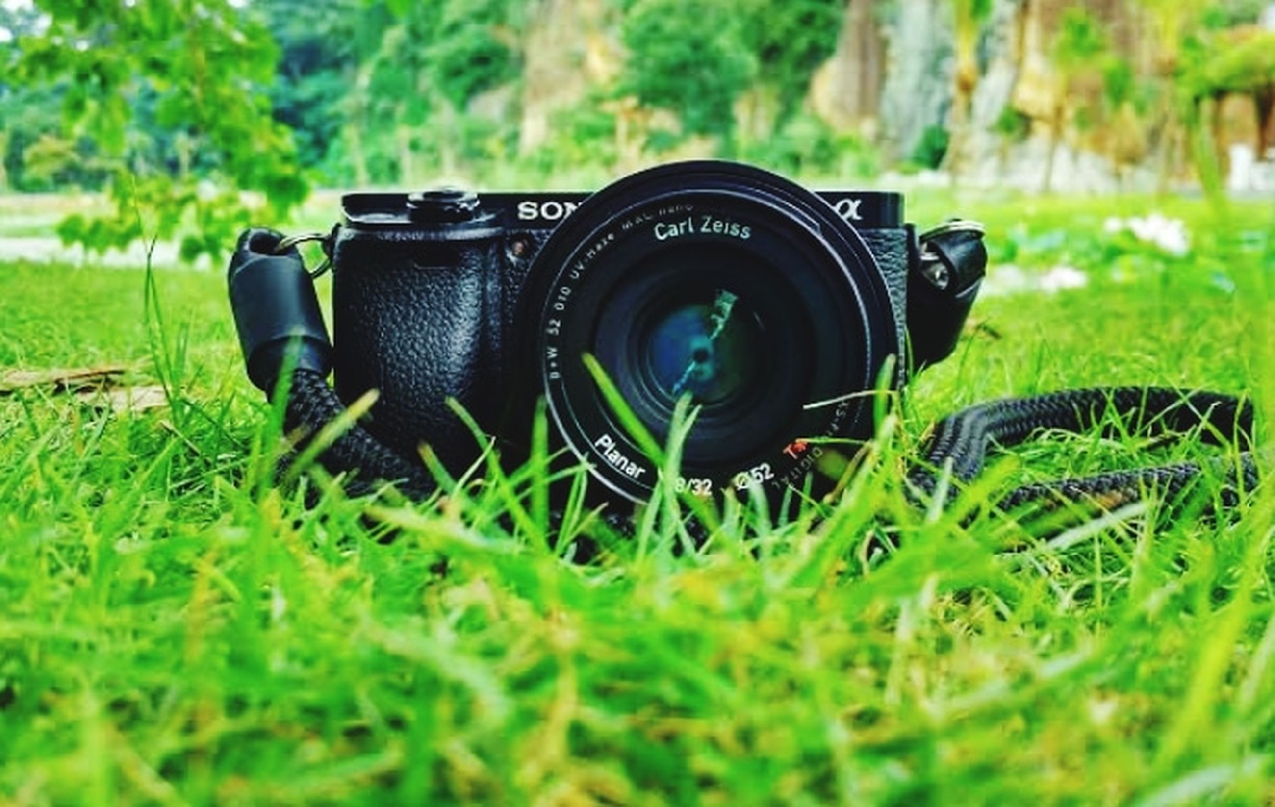 green, grass, plant, camera, technology, lawn, photographic equipment, lens - optical instrument, field, land, day, selective focus, nature, no people, close-up, photographing, activity, growth, lens - eye, outdoors, digital slr, equipment