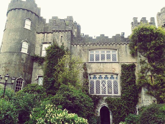 Nature Malahide Castle Ireland