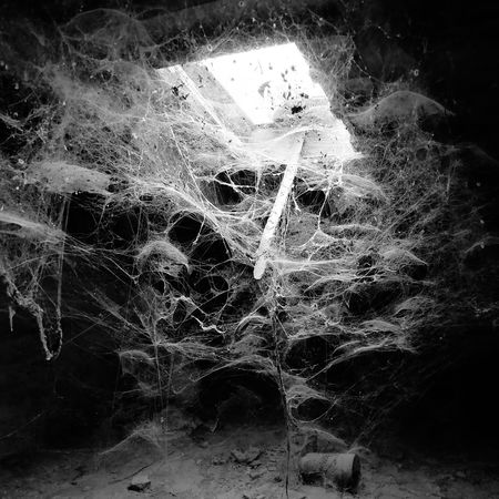Scary attic. Old Attic Attic Cobweb Horror Horror Photography Vintage Spooky Halloween Vampire Zombie Ghost