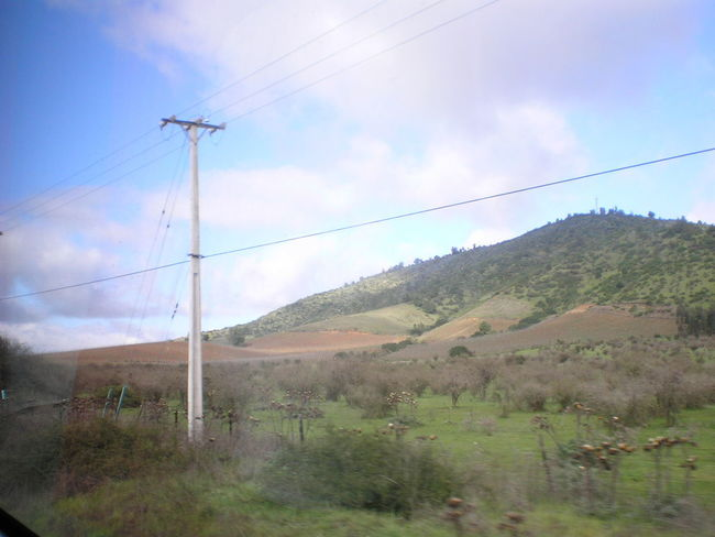 Isla Negra Beauty In Nature Cable Connection Day Electricity  Electricity Pylon Field Grass Landscape Nature Neruda No People Outdoors Power Line  Power Supply Sky Tree