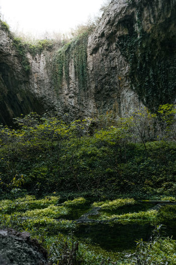 Nature Rock