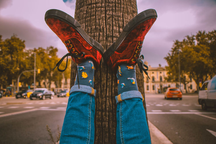 Low Section Of Person With Feet Up On Tree