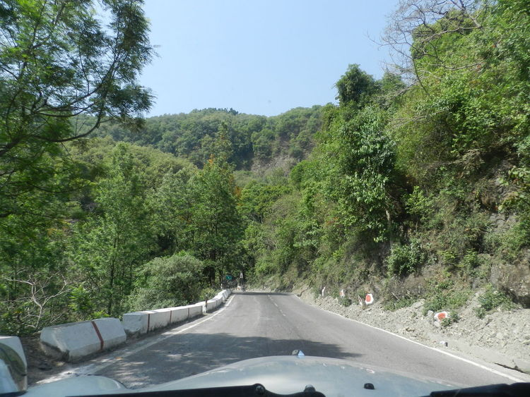 Beauty In Nature Day Driving Ghat Green Color Growth Highway Nature No People Outdoors Sky Sunlight Tree Windshield Shots