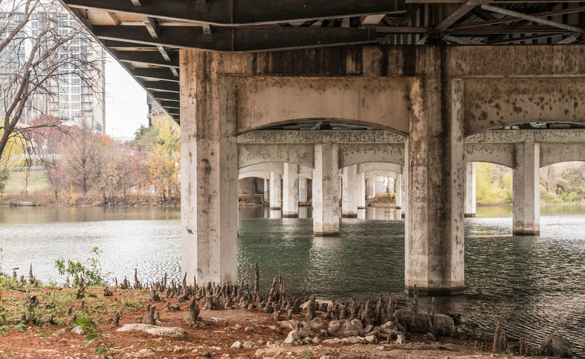 The underside of 1st Street bridge. Cypress Weird Architectural Column Architecture Bridge Building Building Exterior Built Structure Connection Cypress Knees Day History Nature No People Odd Old Outdoors Reflection River Roots Underneath Water