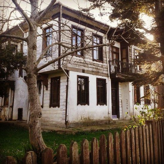 Polonezkoy Adampol Beykoz Istanbul