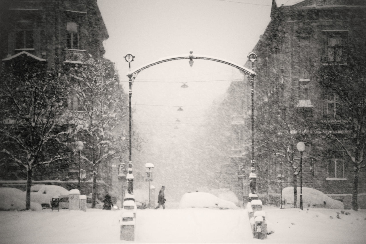 snow, architecture, building exterior, built structure, cold temperature, winter, snowing, nature, tree, street, building, no people, day, transportation, city, plant, mode of transportation, blizzard, street light, extreme weather, outdoors