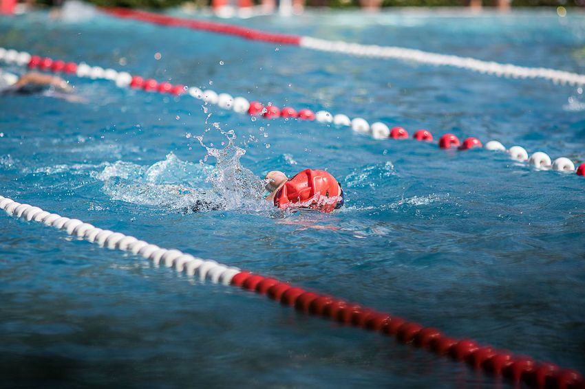Challenge Swimming Swimming Pool Swimmer TRIATHLON Triathlon Athlete Water Red High Angle View Close-up Swimming Lane Marker