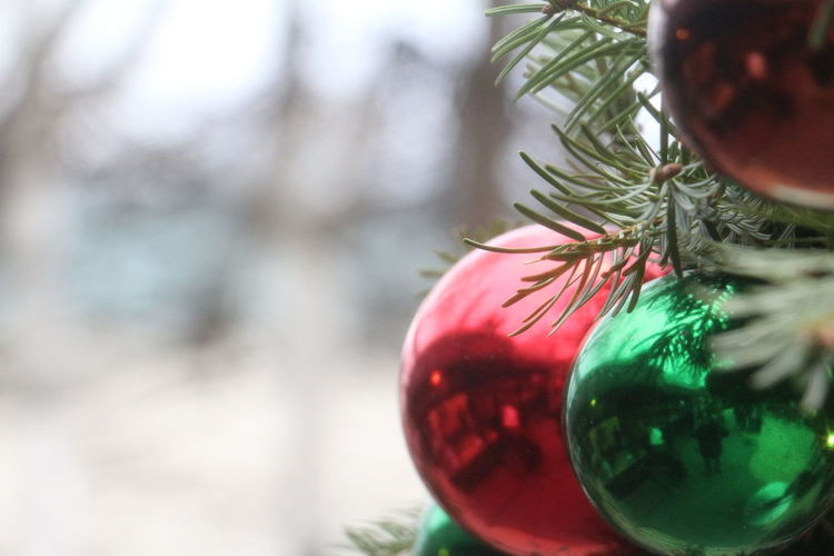 Buitifull Celebration Christmas Christmas Bauble Christmas Decoration Christmas Ornament Christmas Tree Close-up Day Green Green Color Holiday - Event Indoors  Mirror Needle - Plant Part No People Present Read Red Reflection Snow Tree