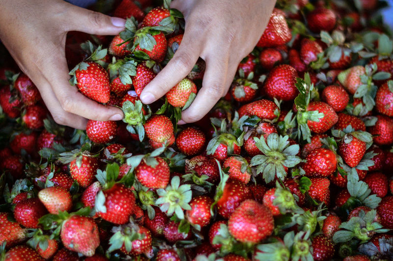 High angle view of hand on strawberries