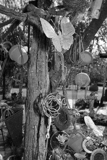 Ones junk another's treasure Art Blackandwhite Branch Bucket Butterfly Creative Day Focus On Foreground Group Photo Hanging Junk No People Plant Pots Ropes Tree Tree Trunk