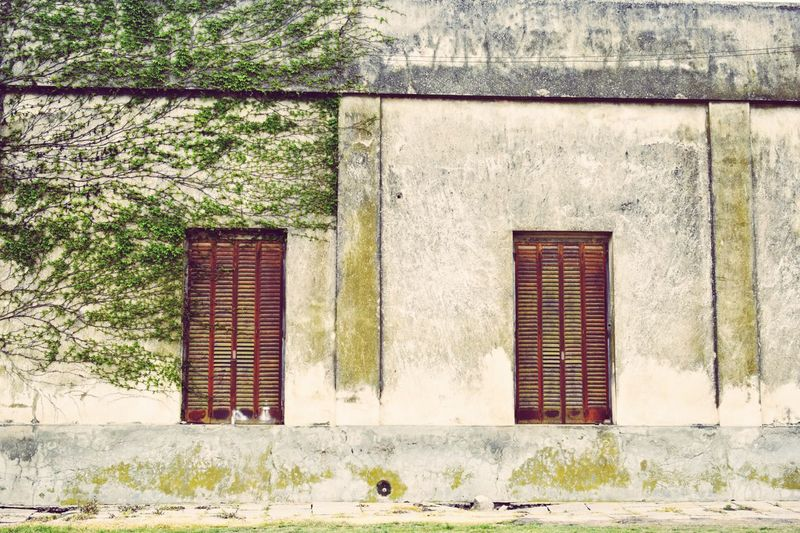 The green side Simplicity Geometry Windows EyeEm Gallery Open Edit DiscoverArgentina Pastel Power Vela Town Buenos Aires