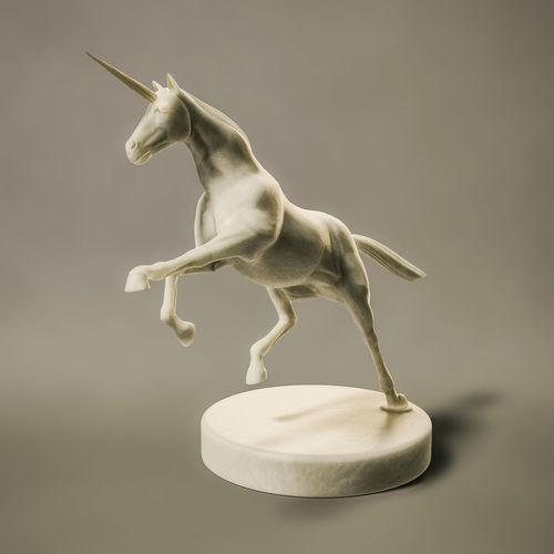 Horse against white background